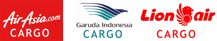 cargo_udara